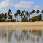 TERUGBLIK: Winterzon in ongerept Noordoost-Brazilië