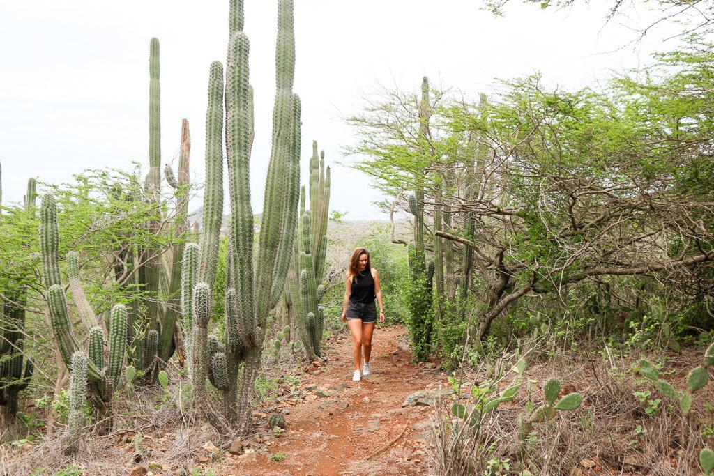 Aruba mooiste plekken