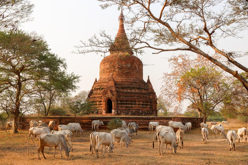 waarom op vakantie myanmar