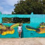 San Nicolas Aruba: de mooiste street art van het eiland!