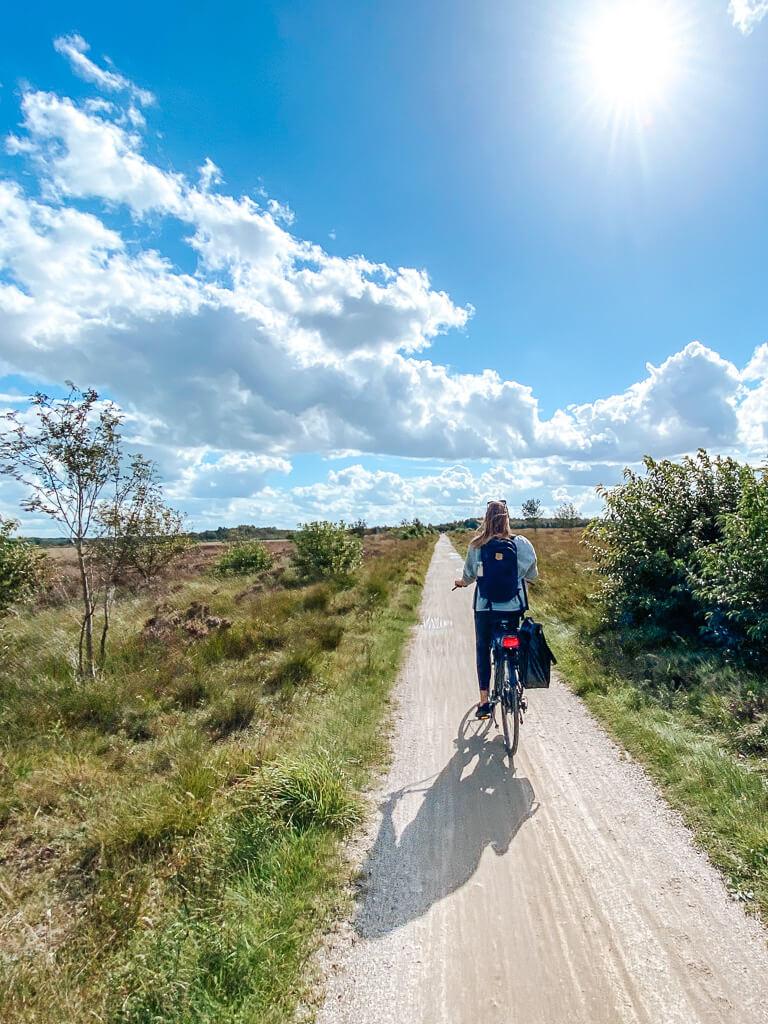 fochteloerveen friesland fietsen