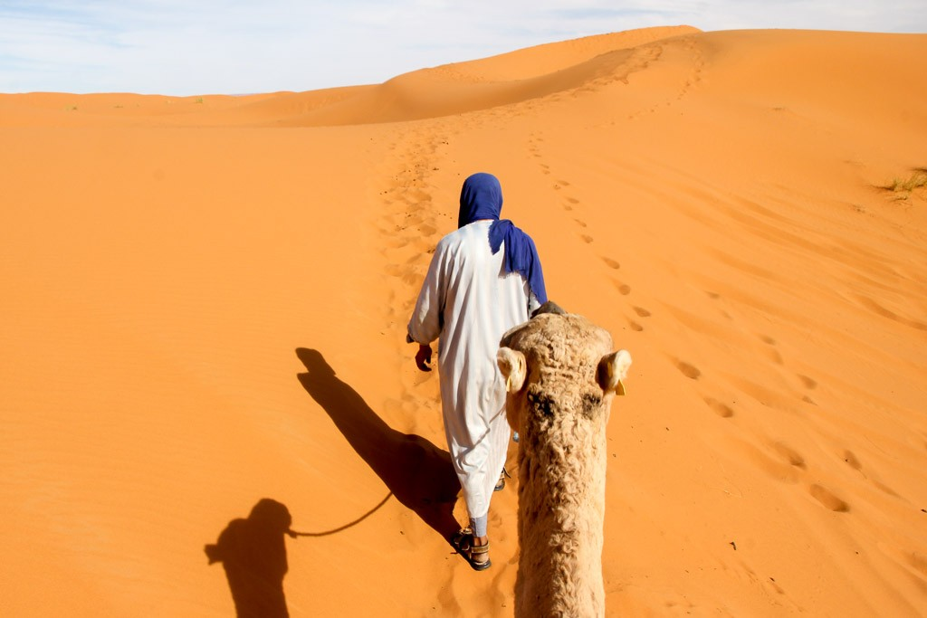 kamelentocht marokko woestijn