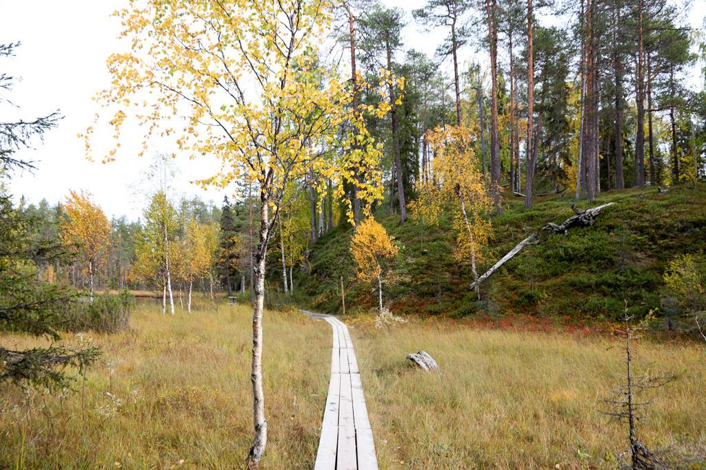karhunkierros finland oulanka