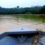 MUST DO: Orang oetans spotten op Borneo