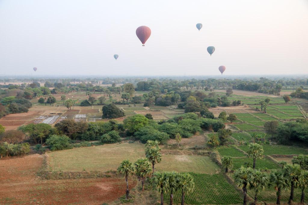luchtballon bagan kosten