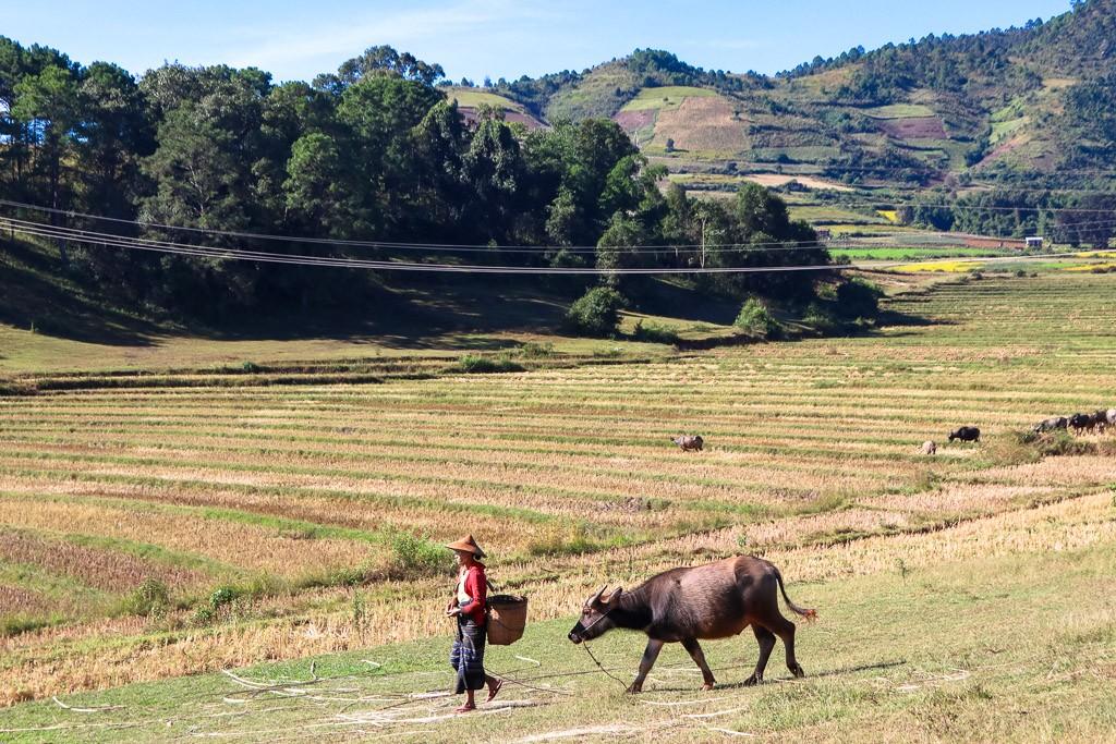 van myanmar naar thailand overland