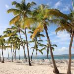 8 x de mooiste stranden van de Dominicaanse Republiek!
