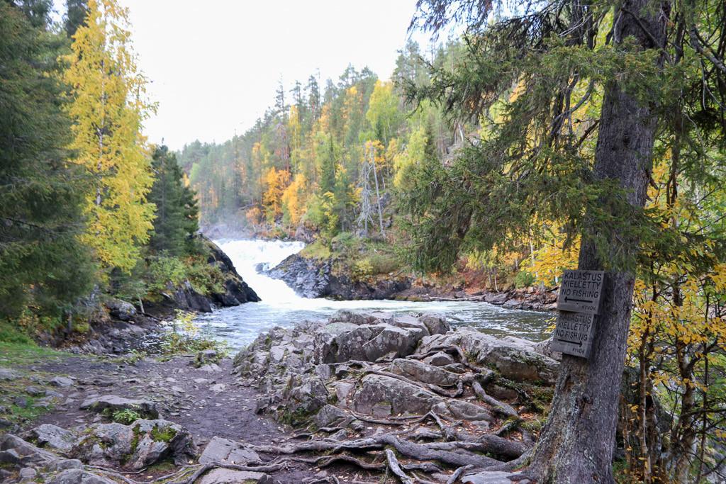 pieni karhunierros wandelen finland