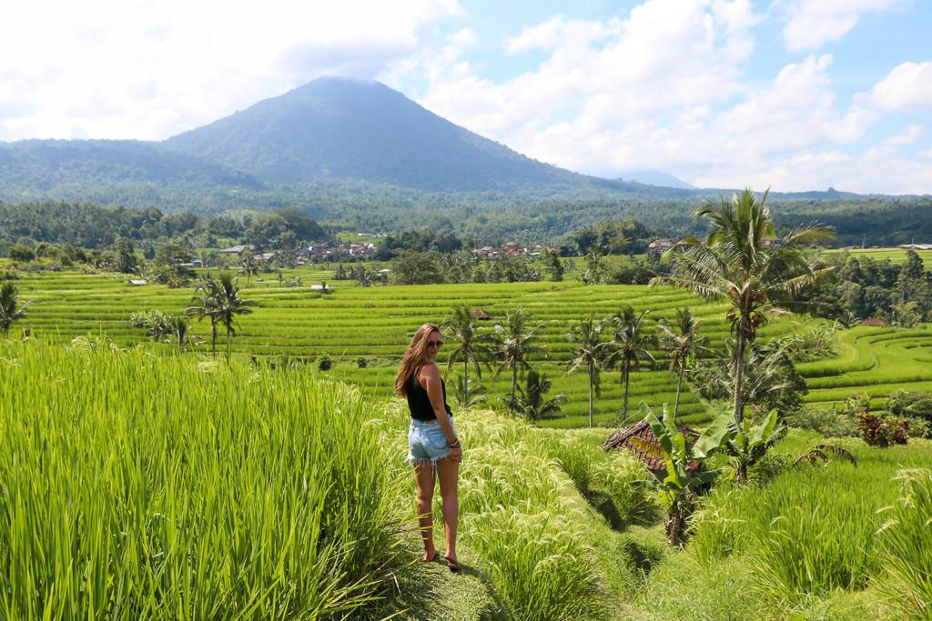 Natuur Bali of Thailand
