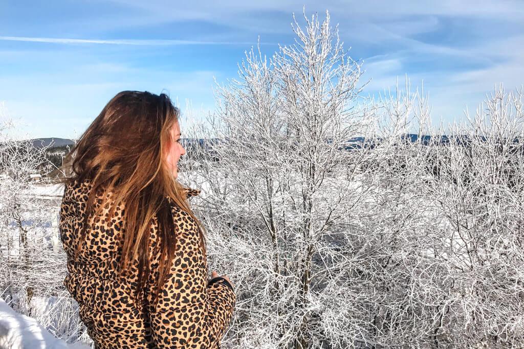winterberg weekendje weg