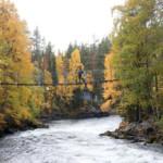Oulanka National Park: de mooiste natuur van Fins Lapland